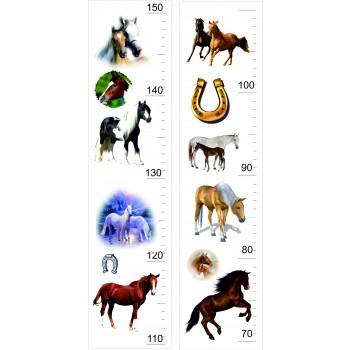 Magasságmérő - Ló