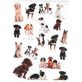 Gyerekmatricák A4 íven - Kutyák