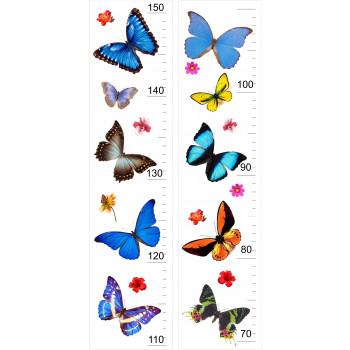 Magasságmérő - Pillangó