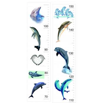 Magasságmérő - Delfin