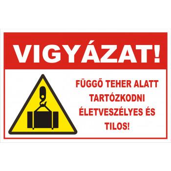 Függő teher alatt tartózkodni életveszélyes és tilos! 01