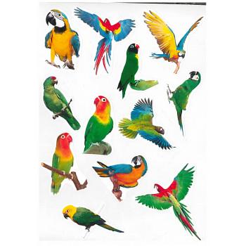 Gyerekmatricák A4 íven - Papagály