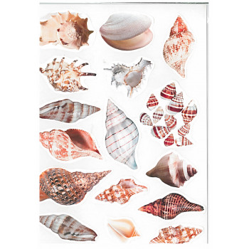 Gyerekmatricák A4 íven - Tengeri kagyló