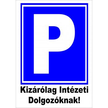 Parkoló! Kizárólag Intézeti Dolgozóknak!
